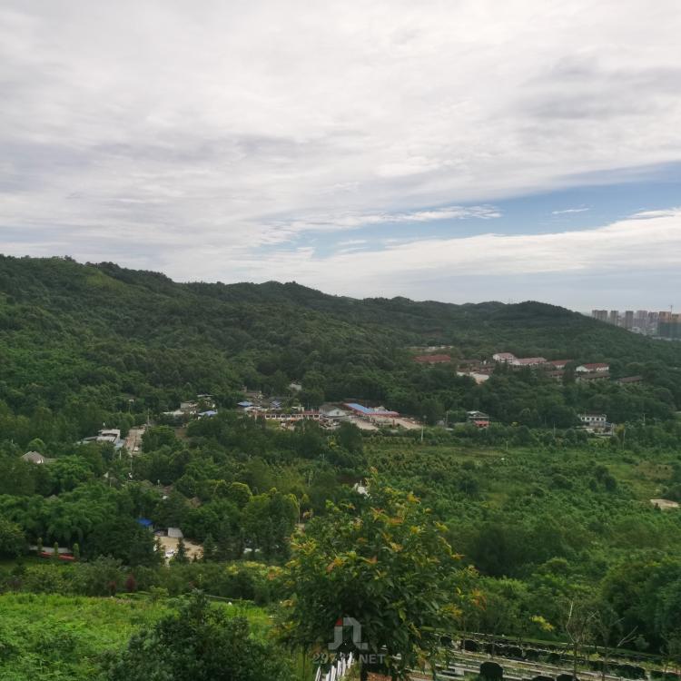 温江城区哪个公墓陵园便宜实惠适合低收入的老百姓消费呢晋源金土坡公墓
