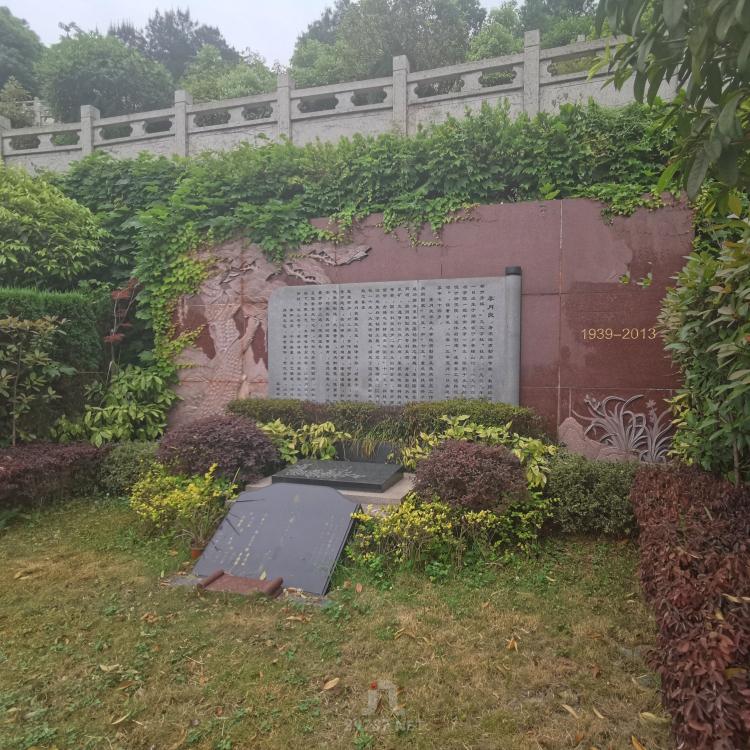 《剑锋视频》航拍蒲江《大兴镇》九仙山红枫艺术陵园