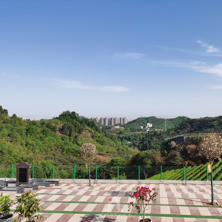 百工偃畔真武山下枇杷沟:真武山憩园公墓给您惊喜的风水陵园