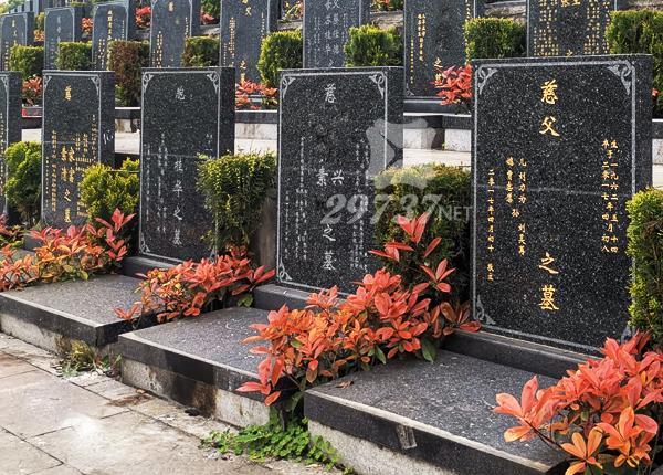 成都莲花公墓乘龙墓区,莲花公墓在成都还是在眉山,双流有哪些公墓呢?