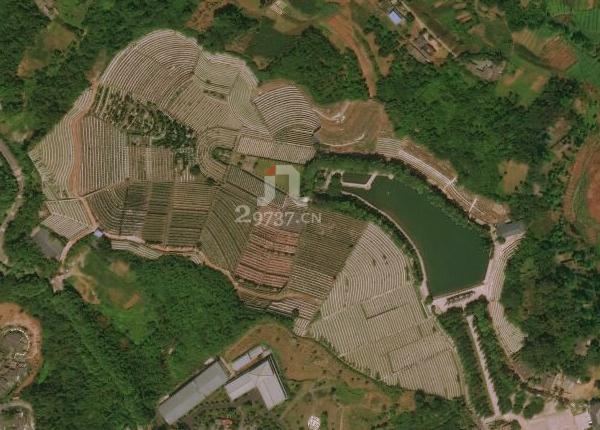 西藏公墓:卧佛山公墓怀抱莲花湖全景给您皇家风水福地
