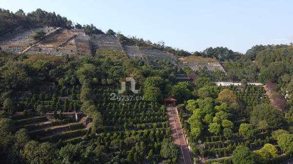 《大邑殡葬》鹤鸣山龙门坎金土坡公墓为数不多的纯自然环境的生态公墓